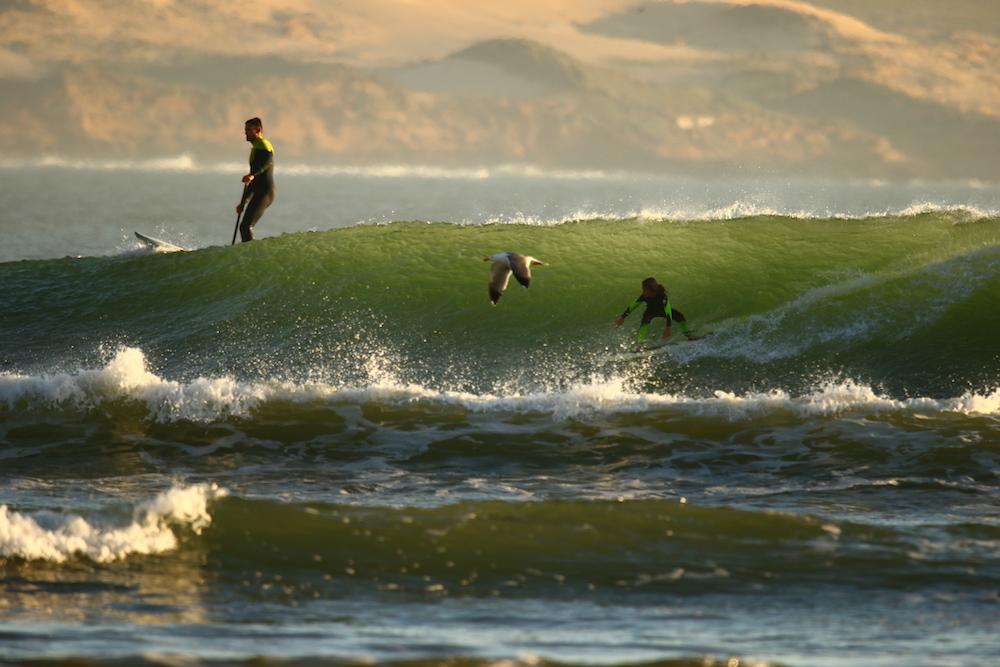 kid surf