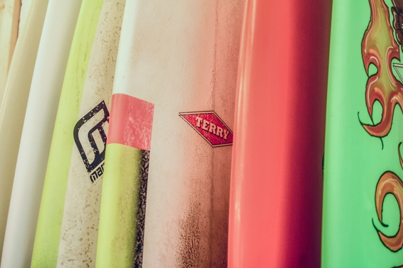 Terry Surfboards